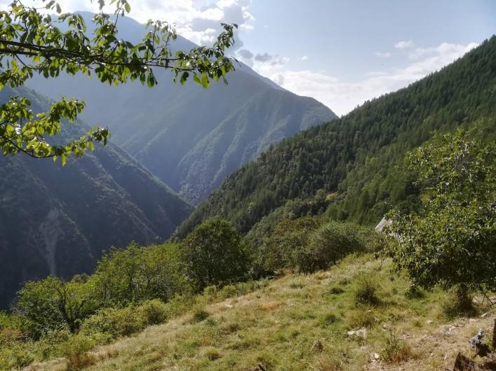Location de vacances - Mas à Grasse - Arrière pays Niçois dans le Mercantour