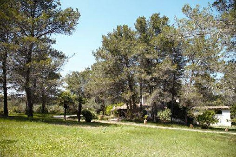 Location de vacances - Mas à Paradou - Grand prairie verdoyante côté Sud