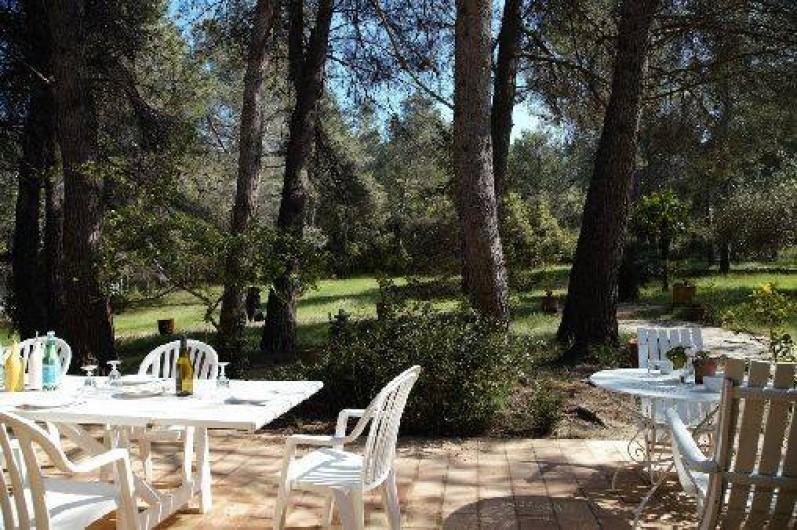 Location de vacances - Mas à Paradou - Terrasse côté Sud