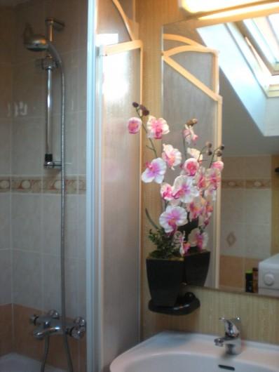Location de vacances - Appartement à Saint-Pierre la Mer - Salle de bain