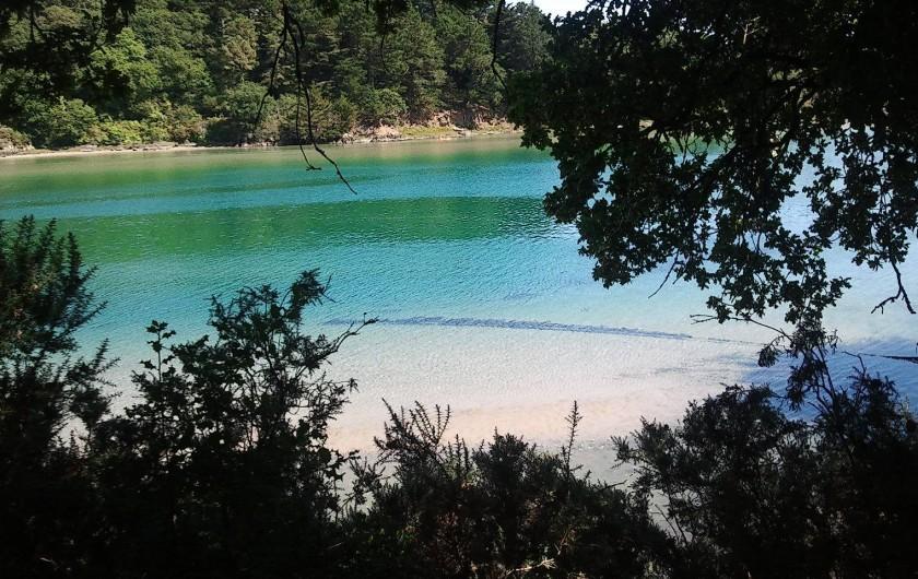 Location de vacances - Gîte à Clohars-Carnoët - bord de rivière