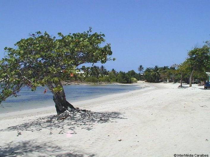Location de vacances - Villa à Saint-François - Plage Anse à la Gourde