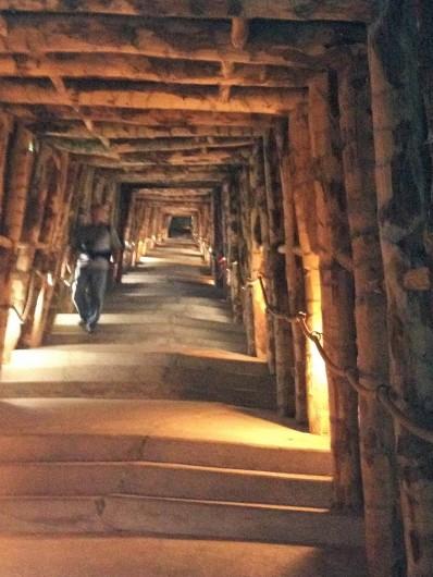 Location de vacances - Bungalow - Mobilhome à Sigean - terra vinéa