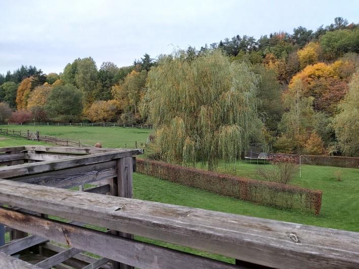 Location de vacances - Gîte à Haut-Fays - Piscine vue du jacuzzi