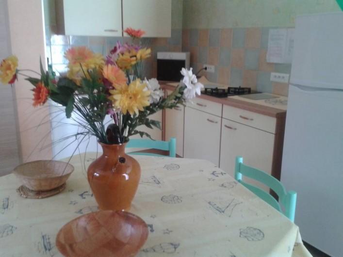 Location de vacances - Villa à Allègre-les-Fumades - Coin cuisine toute équipée avec frigo congélateur