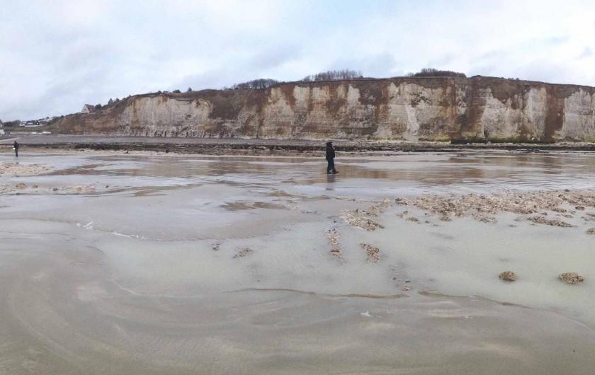 Location de vacances - Maison - Villa à Dieppe - Les falaises à marée basse