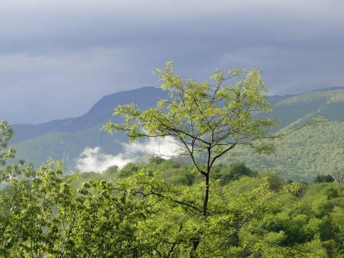 Location de vacances - Chalet à Uzer - Vue vers le sud