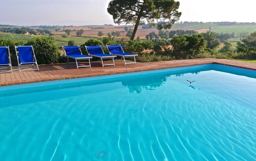 Location de vacances - Appartement à Castiglione del Lago - La piscine