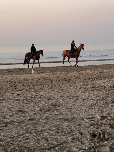 Location de vacances - Studio à Port-Deauville - Balade à cheval sur la plage de Deauville