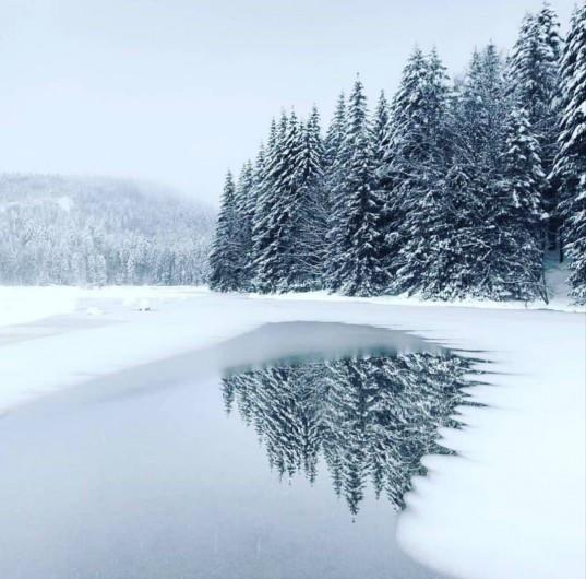 Location de vacances - Chalet à Anould - Lac enneigé et gelé
