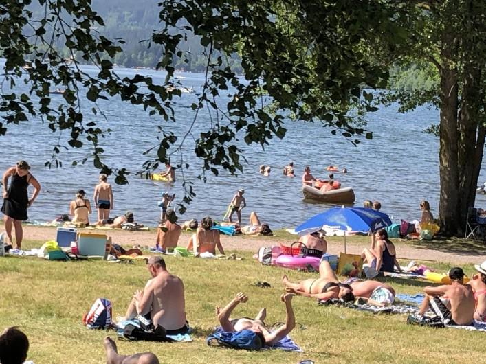 Location de vacances - Chalet à Anould - Baignade au lac