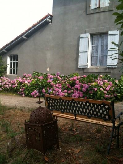 Location de vacances - Gîte à Eauze - Hortensias