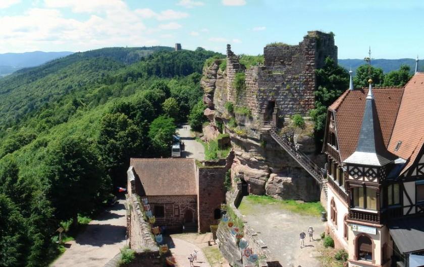 Location de vacances - Chambre d'hôtes à Monswiller - Vue du chateau du Haut-Barr, Saverne