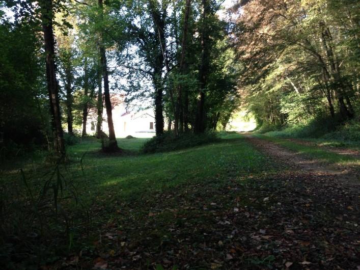 Location de vacances - Maison - Villa à Saint-Amand-de-Coly - sous bois au sud de la maison