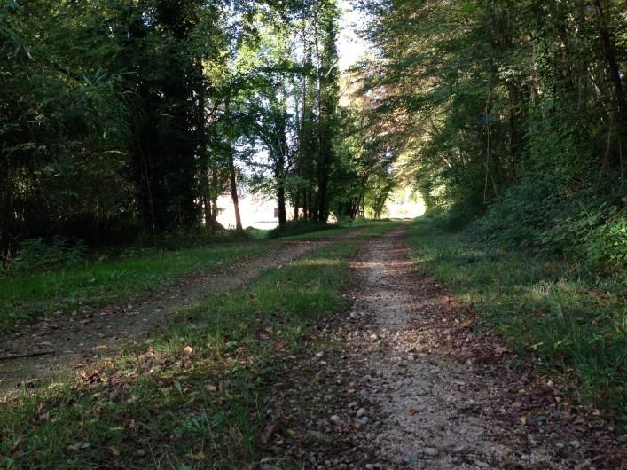Location de vacances - Maison - Villa à Saint-Amand-de-Coly - chemin  promenade