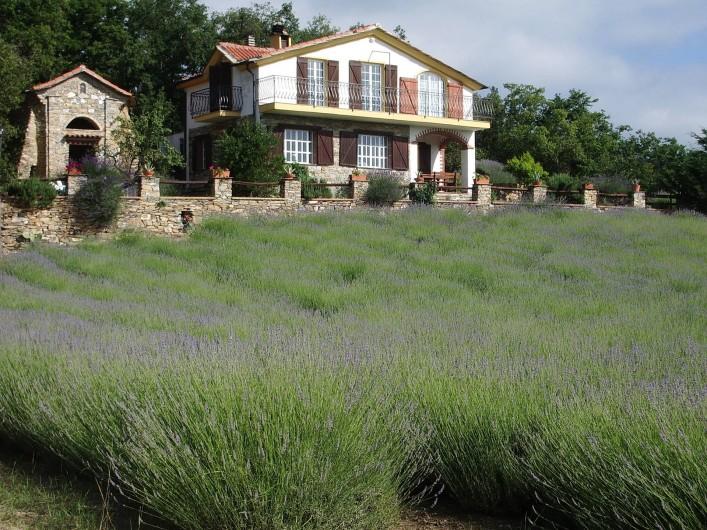 Location de vacances - Gîte à Vasia - La maison casa Roccolo et les champs de lavande