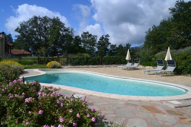 Location de vacances - Gîte à Vasia - la piscine a forme libre 40 m. carrè et avec petite plage pour les enfants