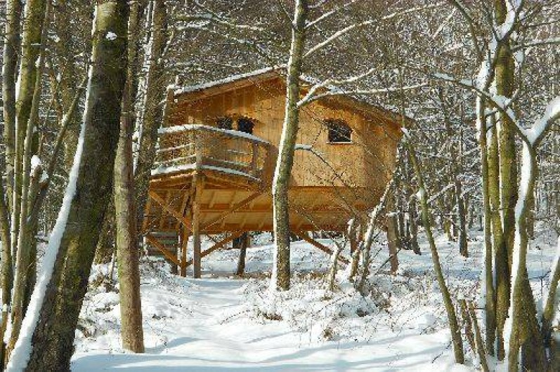 """Location de vacances - Cabane dans les arbres à Grandfontaine - Cabane Tribu (2-4 couchages) """"Le Refuge du Trappeur"""""""