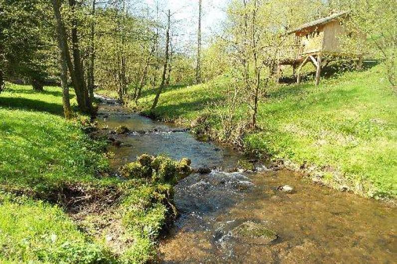 """Location de vacances - Cabane dans les arbres à Grandfontaine - Cabane Couple (2-3 couchages) """"L'Ile aux Pêcheurs"""
