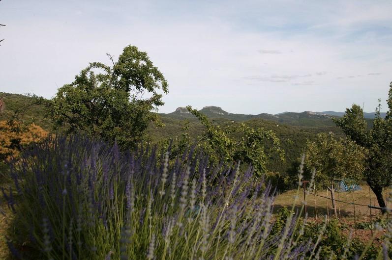 Location de vacances - Gîte à Cros - Vue depuis la piscine