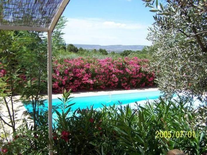 Location de vacances - Maison - Villa à Mérindol - Piscine et lauriers roses