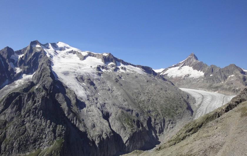 Location de vacances - Chalet à Bellwald - Glacier de Fiesch avec Finsteraarhorn