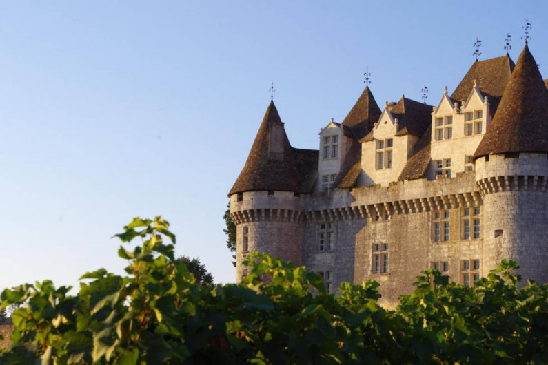 Location de vacances - Gîte à Saint-Agne - Le château de Monbazillac à 10 kms