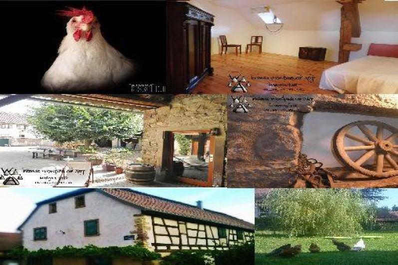 Location de vacances - Chambre d'hôtes à Marmoutier