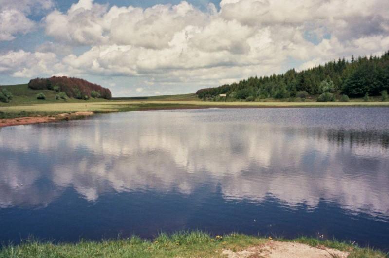 Location de vacances - Gîte à Saint-Pierre-de-Nogaret - Lac du Col de Bonnecombe