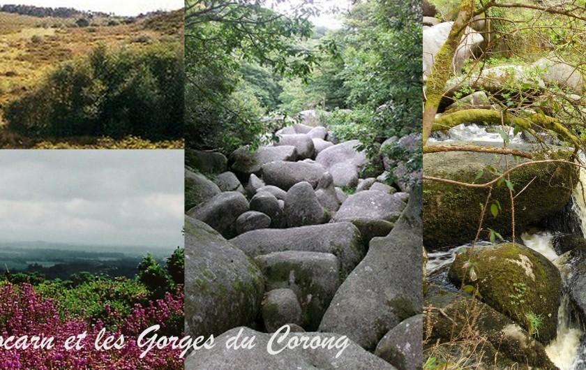 Location de vacances - Gîte à Locarn - Les Gorges du Corong et les Landes de Locarn