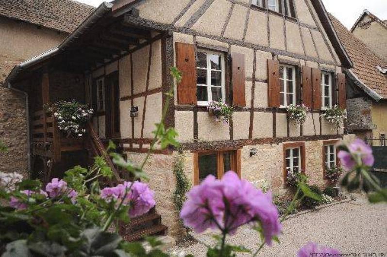 Location de vacances - Maison - Villa à Bergheim