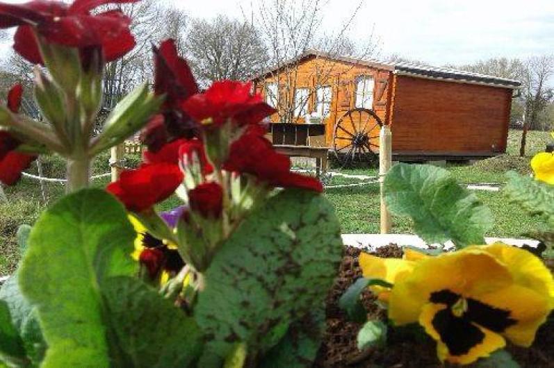 Location de vacances - Insolite à Rezay - notre site est constitué de chalet et paillotes de bois.