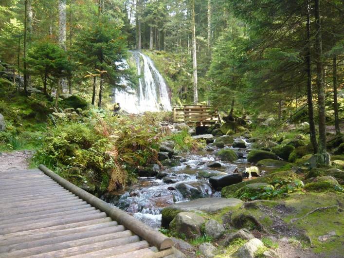 Location de vacances - Chalet à Le Tholy - La cascade de la pissoire
