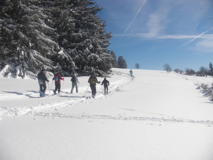 Location de vacances - Chalet à Le Tholy - Raquettes à neige