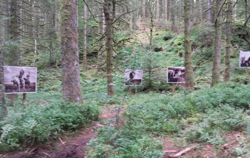 Location de vacances - Chalet à Le Tholy - Le sentier de la photo à 3 kms