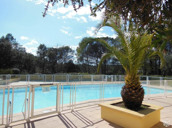 Location de vacances - Appartement à Saint-Raphaël - la piscine