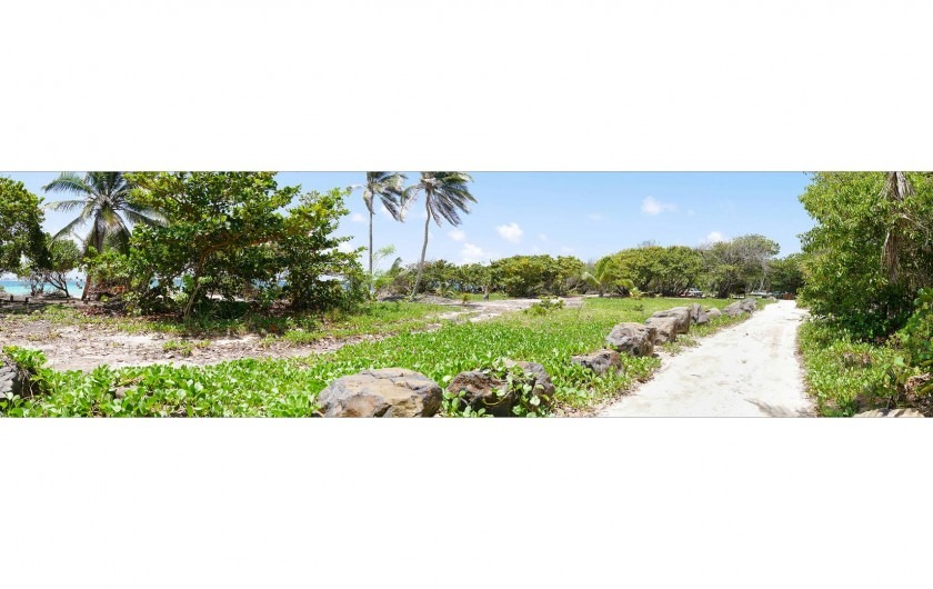 Location de vacances - Villa à Sainte-Anne - Allée longeant la plage du Cap Chevalier.