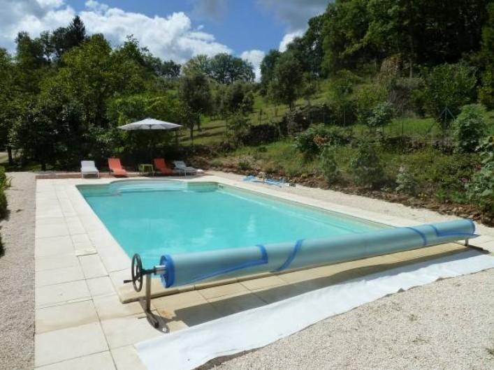 Location de vacances - Gîte à Terrasson-Lavilledieu - PISCINE
