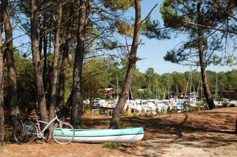 Location de vacances - Gîte à Lacanau