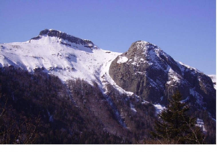 Location de vacances - Gîte à Le Falgoux - Vue de la maison en hiver