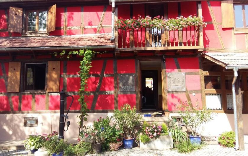 Location de vacances - Gîte à Olwisheim - la cour fin mai