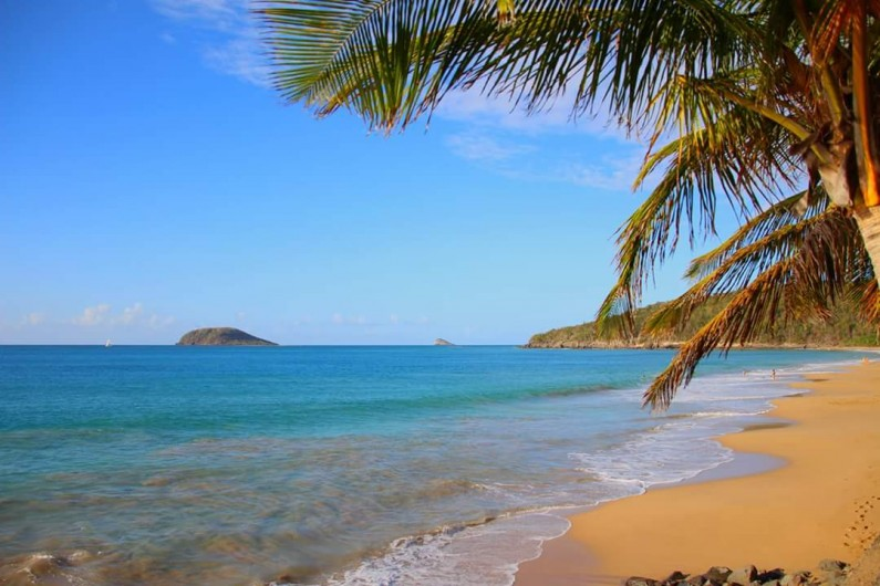 Location de vacances - Villa à Deshaies - Ilet. Kaouane, vue de la plage de la Perle
