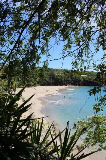 Location de vacances - Villa à Deshaies - Plage de Leroux