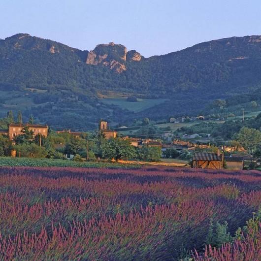 Location de vacances - Camping à Piégros-la-Clastre - Paysage autour du camping les Chamberts à Piégros La Clastre dans la drôme.