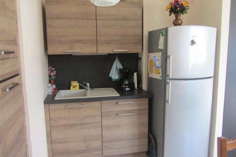 Location de vacances - Appartement à Faverges - coin évier et frigo congel