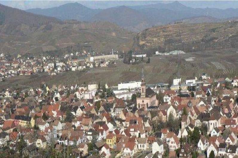 Location de vacances - Appartement à Wintzenheim - vue sur Wintzenheim
