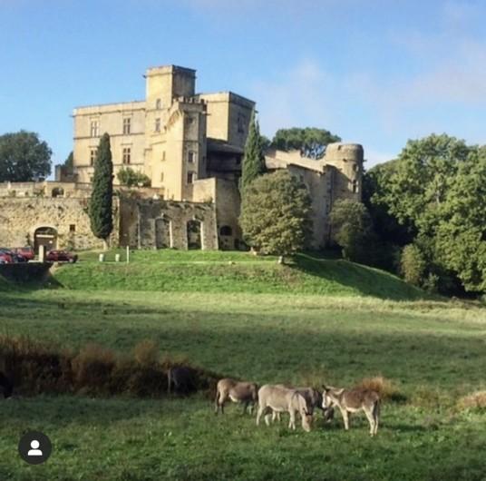 Location de vacances - Mas à Villelaure - Le château de Lourmarin (à 15 mn de la ferme)