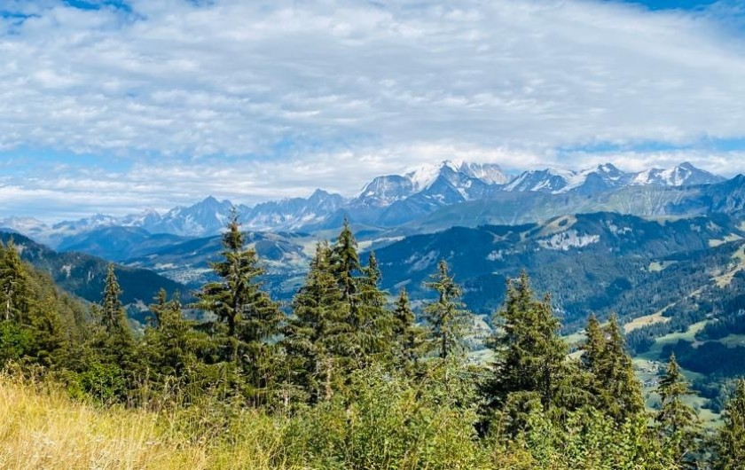 Location de vacances - Chalet à Megève - au pays du mon tblanc