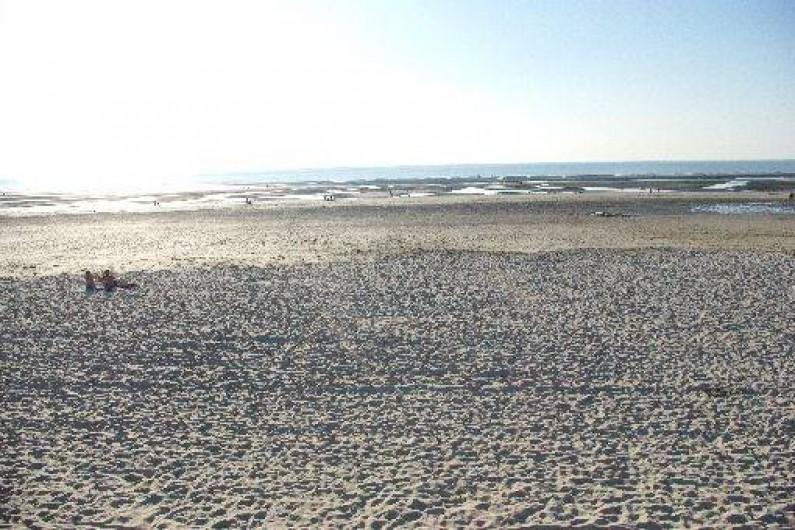 Location de vacances - Maison - Villa à Fort-Mahon-Plage - Vue de la plage un matin
