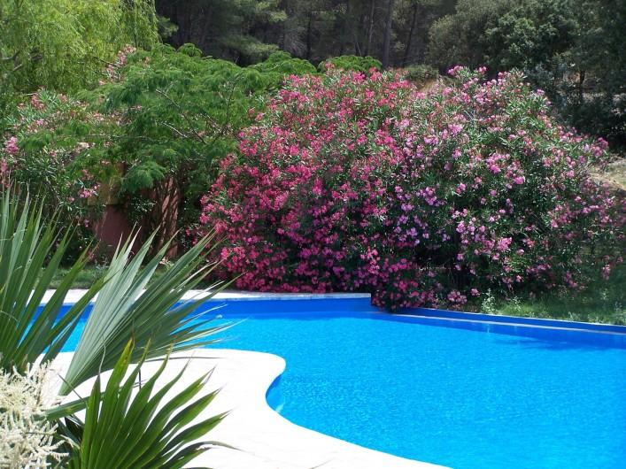 Location de vacances - Mas à Les Baux-de-Provence - piscine du Mas de Joseph